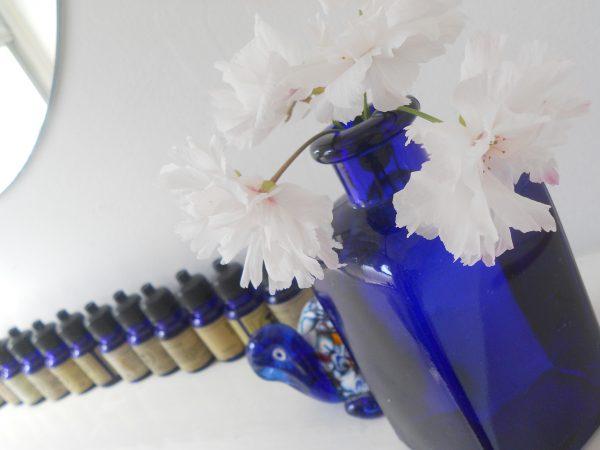 桜とブルー