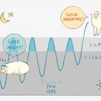 ストレスを軽減させてくれる理想の睡眠とは?専門家がズバリ解明!