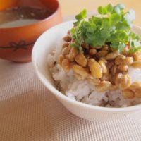 今日から「菌活」!腸内環境の改善にオススメの食材5つ