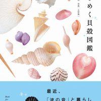 朝は貝殻を探しに。波の音と暮らしたくなる本『ときめく貝殻図鑑』