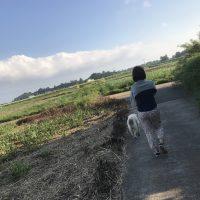 喜界島の週末の朝時間。