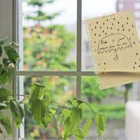 「特別な朝」は作れる!梅雨の朝を楽しむ簡単アイデア2つ