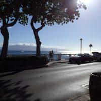 早起きして散歩しよう♪ハワイ・マウイ島のおすすめ朝スポット2つ