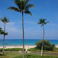 初日の過ごし方で時差ボケ解消!ハワイ島のおすすめ朝時間♪