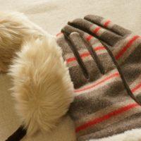 美人の合言葉は「冷やさない!」今日からできる温活のヒント3つ
