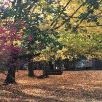 ハドソンバレーの秋景色