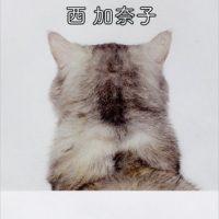 好きすぎて苦しい。恋の痛みに貫かれる、西加奈子の本『白いしるし』