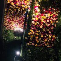 【恵比寿】超お得!素敵な花に囲まれて500円のモーニングビュッフェ