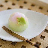 お花見にもおすすめ♪コンビニで買える「春の和菓子」3選