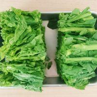 マスターしたい!「菜の花」基本のゆで方&おすすめレシピ