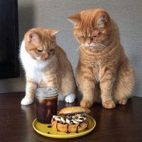 デザートみたいなご褒美朝ごはん♪こってり「チョコバナナベーグルサンド」