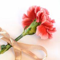 いつもありがとう♪「母の日」に贈りたいプレゼント4選