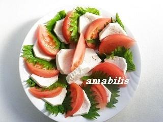 豆腐の夏野菜サラダ by:amabilisさん