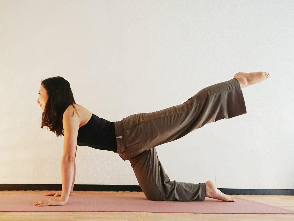 体幹を鍛えて姿勢を美しく!「ねこのポーズ」バリエーション♪