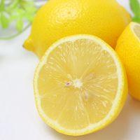 止まらないおいしさ♪この夏食べたいスナック菓子はこの「塩レモン」味!