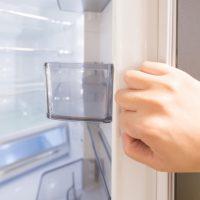 夏の定番!?「おうちの冷蔵庫にあるある」ソフトドリンク5選