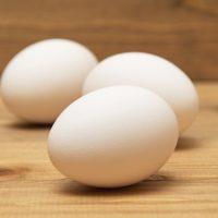 「卵を産む」を3単語の英語で言うと?