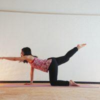 「ヨガトレ」で美BODY!体幹を鍛えるネコのバリエーションポーズ