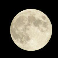 話題の「月旅行」英語では何と言う?