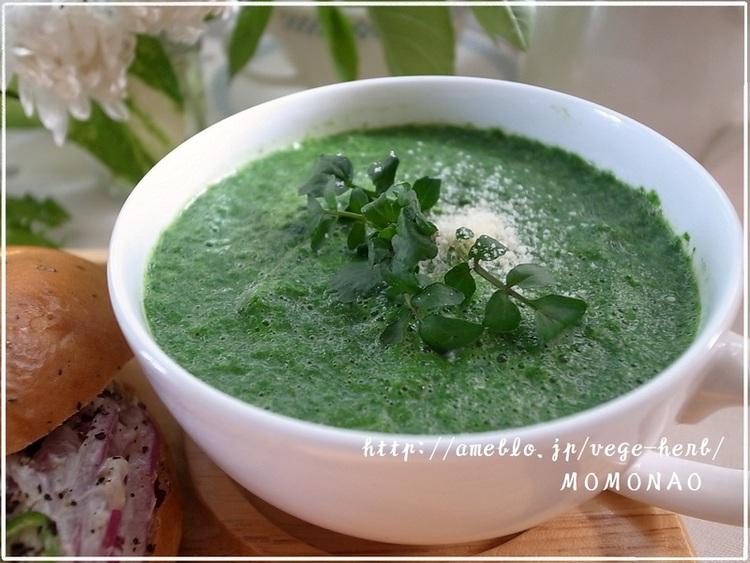 すぐできる♪超簡単ほうれんそうポタージュスープ☆分離しない豆乳スープ by:MOMONAOさん