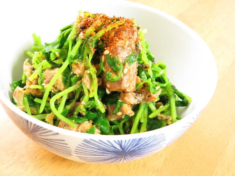 簡単☆サバ缶と豆苗のピリ辛七味ごま和え by:kaana57さん