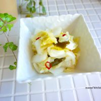 大量消費レシピ!簡単おいしい「白菜のお漬物」の作り置き