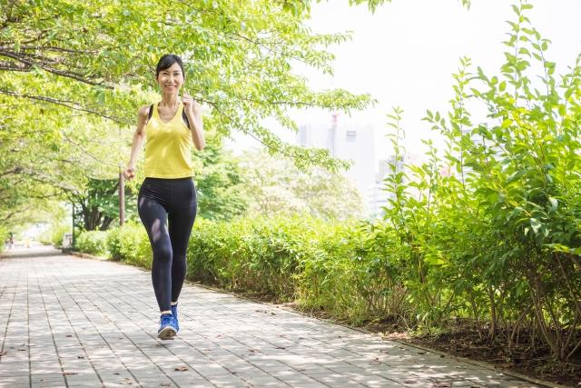 ジョギングが気持ちいい季節!