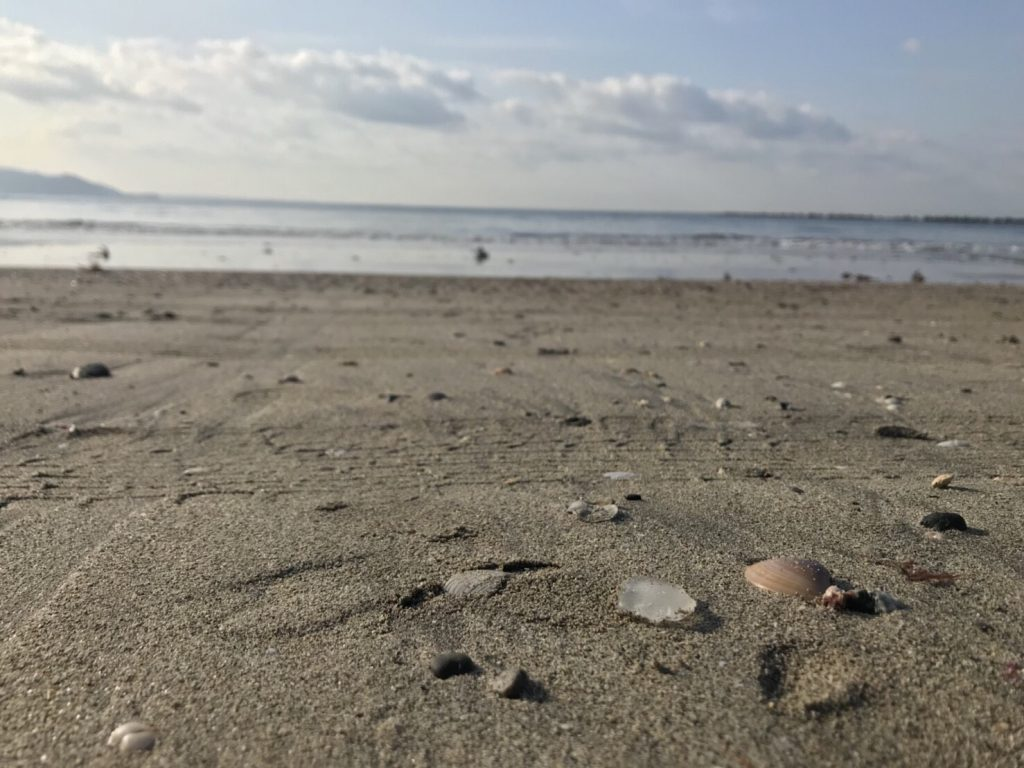 「鎌倉」朝の海