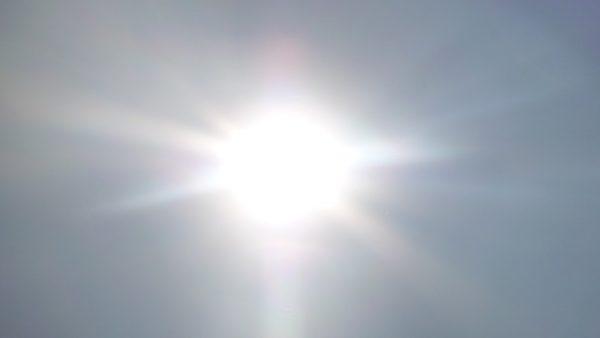 夏の日差し