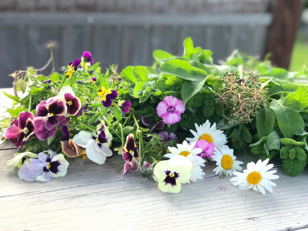 花の美しさに癒される♪五感で楽しむ私の朝時間