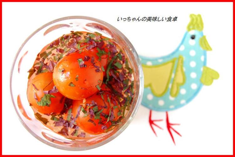 プチトマトのしそ生姜風味ノンオイルマリネ☆ by:エリオットゆかりさん