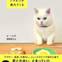 猫と一緒の小さな暮らしで幸せに。優しさに包まれるフォトエッセイ集