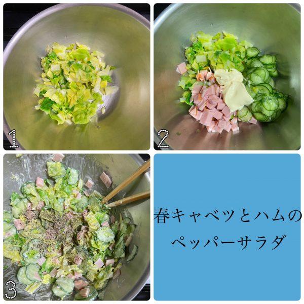 クセになるピリ辛味!簡単作り置き「春キャベツとハムのペッパーサラダ」