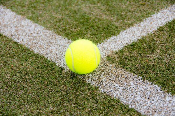 芝のテニスコート