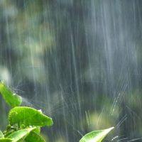 「ゲリラ豪雨」を2単語の英語で言うと?