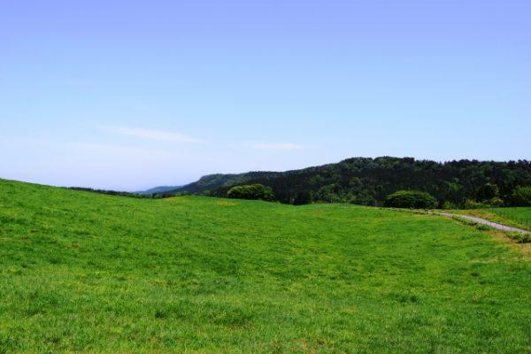 青空と高原