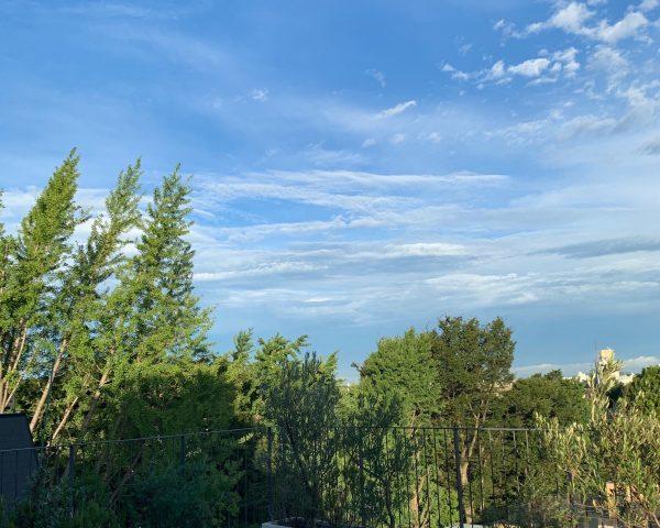 早起きしてベランダから見た景色