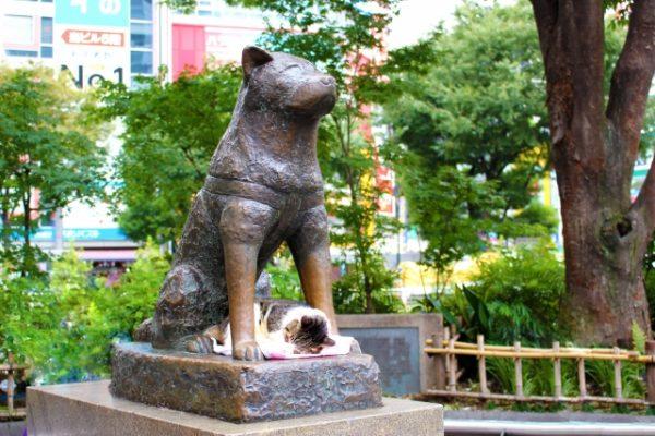 渋谷のハチ公像