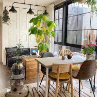 窓際のおうちカフェがお気に入り♪植物たちと暮らすわたしの朝時間