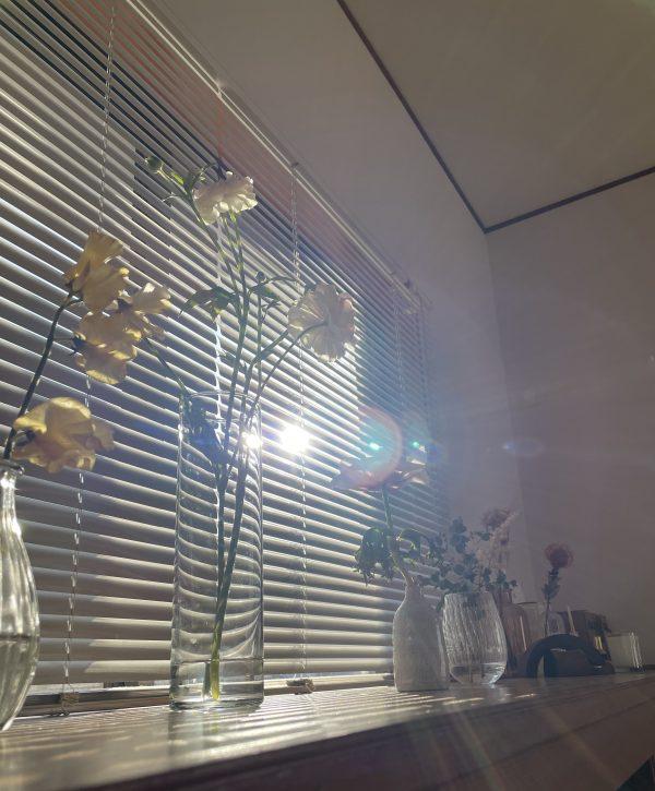 朝の光とお花