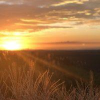 身近にある絶景!私が朝の「日の出」をおすすめする理由